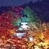 2015  京都 嵐山 永観堂 紅葉