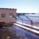 【紅鮎】静かな湖畔の国道沿い 滋賀県のお薦め温泉